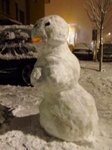 snow-me